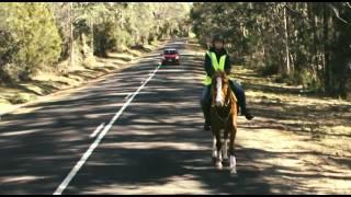 Video Car Safety around Horse Riders download MP3, 3GP, MP4, WEBM, AVI, FLV Desember 2017
