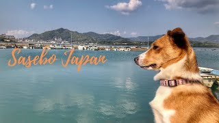 Adventures in Sasebo, Japan! •  佐世保日本