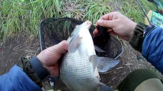 Рыбалка на фидер.Лещ карась