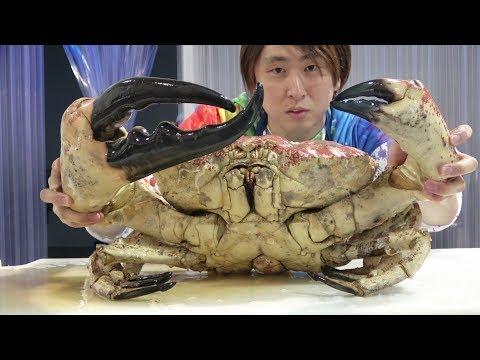 1匹17万円!世界最大のカニ『タスマニアキングクラブ』をさばいて食べてみた!WORLDS BIGGEST $1700 CRAB??
