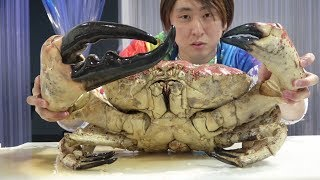 "170000 yen ($1500 US) for one! I tried the world's largest crab ""Tasmanian King Crab""!"