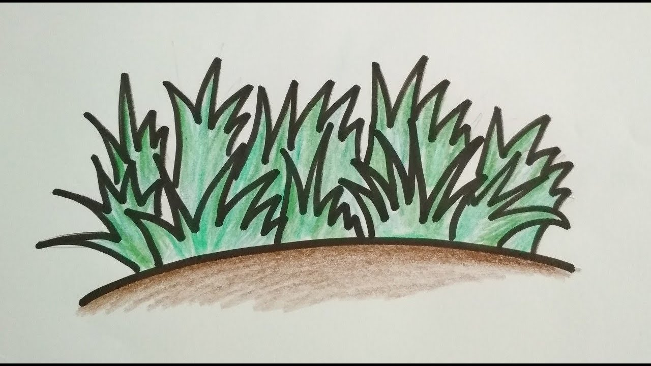 Drawing Simple Grass For Kids