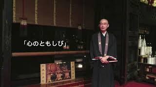 心のともしび―自灯明・法灯明―:法話巡礼33