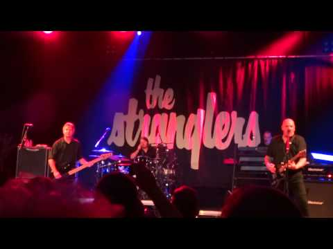 The Stranglers @ Reo ROck Roeselare 2015 Peaches