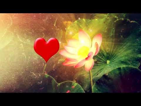 'Здоровое Сердце' Медитация