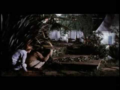 Tenebre (Trailer)