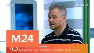 Как будет меняться погода в столице в ближайшие сутки - Москва 24