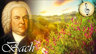 Classical Music for Studying | Bach Study Music | Piano Music for Reading and Concentration