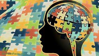 Jídlo v boji proti zánětu mozku u autistů