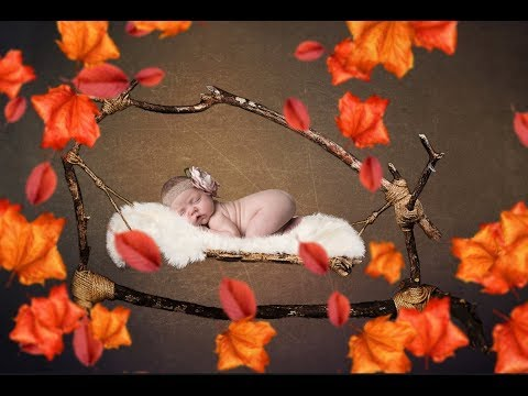 Hammock Newborn Digital Backdrop | Quick and Easy