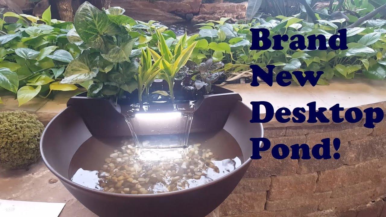 Aquascape S Brand New Aquagarden Mini Pond Kit Unboxing Youtube