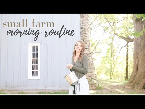 Morning Farm Routine | This Week on the Homestead Episode 16