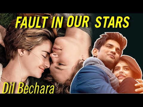 The Fault In Our Stars Movie Explained In HINDI | Fault In Our Stars End Explain