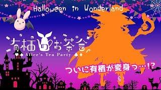 [LIVE] 新衣装公開🎃Halloween in Wonderland.02🎃