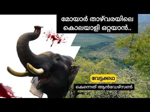മോയാർ താഴ്വരയിലെ കറുത്ത കൊലയാളി| Rogue killer elephant of moyar |real hunting Story| Malayalam
