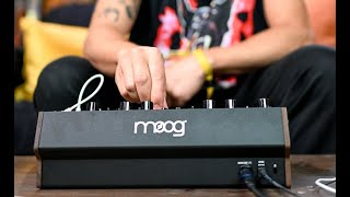 Moog DFAM | Percussion Synth Techniques with Baseck