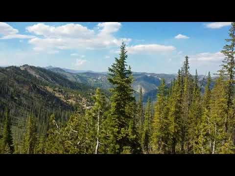 Forest Fire Near Cinnabar, Idaho 7-17-2017