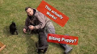 How to stop PUPPY BITING & NIPPING