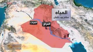 داعش وحرب السدود