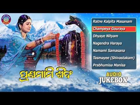 PRANAMAMI SIBAM Sanskrit Shiba Bhajans Full Audio Songs Juke Box | Namita Agrawal |Sarthak Music