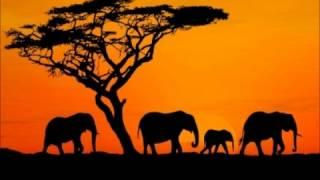 Sindifuna Kukumbatira Pillow - Munsomba (Organized Family)