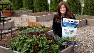 Beginner's Guide to Growing Spinach from Laura at Garden Answer.