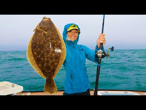 MONSTER Fluke Deep Sea Fishing In Montuak, New York