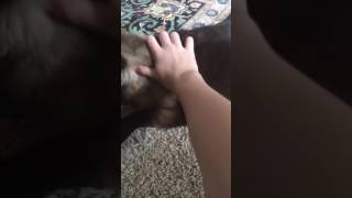 Rubbing my hairy pussy | Crippling Depression