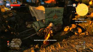 The Witcher 3: A Deadly Plot - Quest Walkthrough