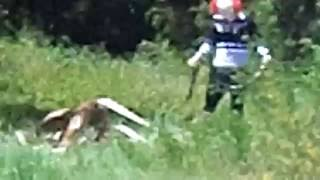 Clown in Woods Caught on Tape