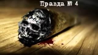 Правда о табаке! СМОТРЕТЬ ВСЕМ! (Жданов)
