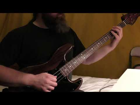 """""""Stinkfist"""" - TOOL Bass Cover"""