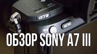 Обзор Sony A7III. Видеосъемка .