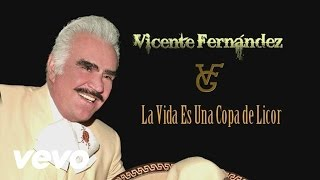 Vicente Fernández - La Vida Es una Copa de Licor (Cover Audio)