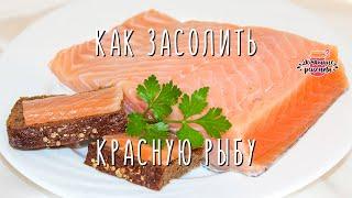 Как вкусно засолить красную рыбу в домашних условиях. Рецепт как быстро засолить семгу дома