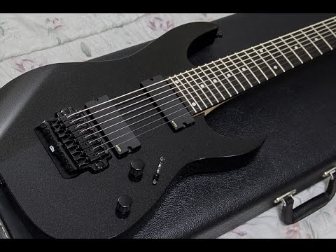 Ibanez RG2228 Review