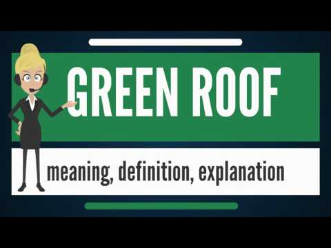 What is GREEN ROOF? What does GREEN ROOF mean? GREEN ROOF meaning, definition & explanation