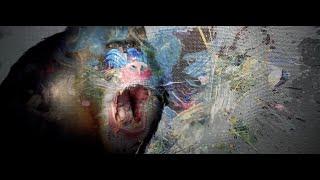 Martin Gore - Mandrill (Official Visual)
