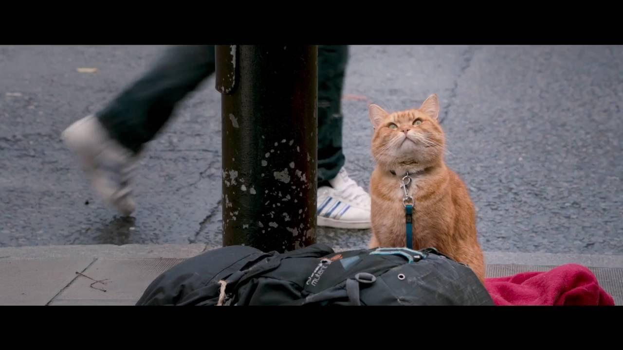 Уличный кот по кличке боб скачать в hd