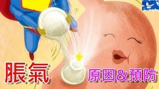 肚子內怎麼會有氣體? 淺談脹氣的發生及預防 | 三分鐘聊醫學EP15