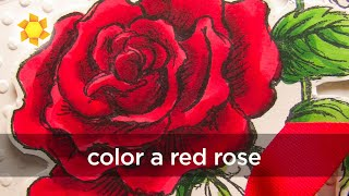 Coloring a red red rose (Copic markers)