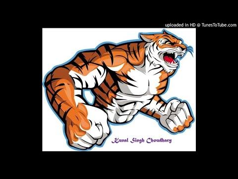 Tiger Zinda Hai Ringtone