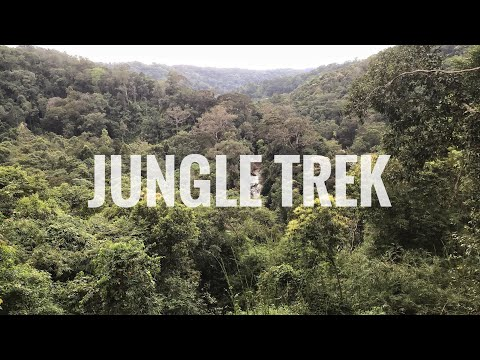 Cambodia Travel Vlog 020 - 12 Mile Jungle Trek! Mondulkiri Project