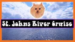 Blue Spring State Park, Florida  - St. Johns River Cruise - The Glamping Guys - RV Living Full Time