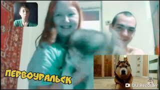 #хаски #бандит #бублик Реакция на новое видео хаски бандит