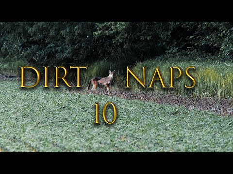Dirt Naps 10 I Daylight Double Coyote Hunting