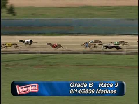 Victoryland 8/12/09 Matinee Race 9