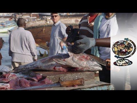 Somali Pirates Begin New Lives As Fishermen