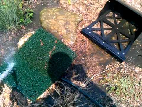 Cleaning pond filter and uv light