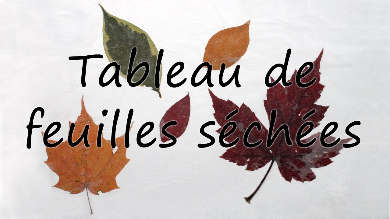 bricolage avec feuilles d 39 automne youtube. Black Bedroom Furniture Sets. Home Design Ideas
